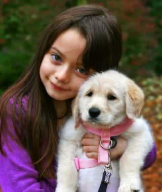 11 dicas para tornar a adoção do seu cachorro o menos traumatizante possível